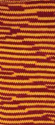 VIZON SAMPIYON 85905