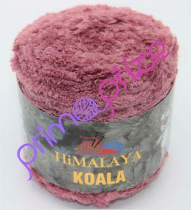 Koala 75702