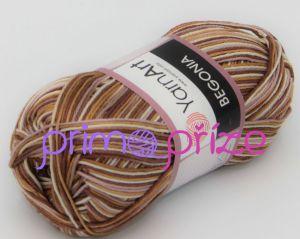 Begonia Melange 506